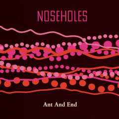 noseholes-ant-and-end-lp-chuchu-records-2019
