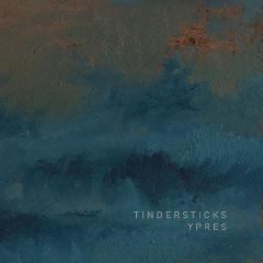 tindersticks-ypres-lucky-dog-city-slang-2014
