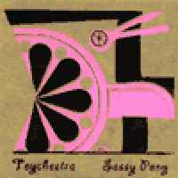 toychestra-sassy-pony-cd-sk-records-2002