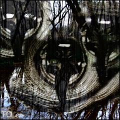 poles-pamplemoustique-ep-autoproduit-2014
